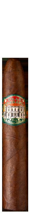 Villa-Casdagli_Pigasus